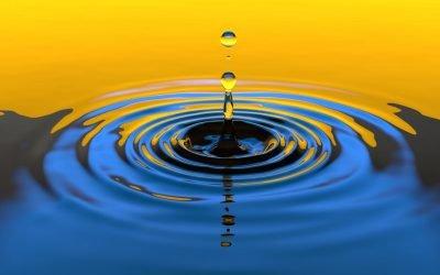 Gocce di mindfulness e Self compassion
